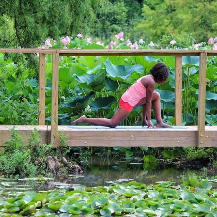 @nadiacherelle - Morning workout at Kenilworth Aquatic Gardens - National park in Washington, DC
