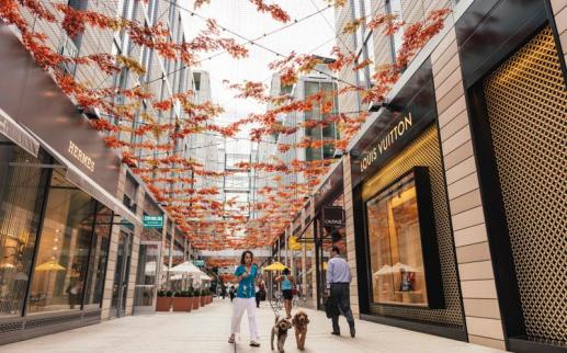 Fall Installation at Palmer Alley in CityCenterDC - Where to Shop in Washington, DC